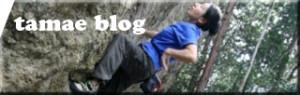 blog_tamae